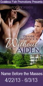 NBtM Without Aiden Book Cover Banner copy