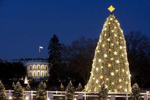 White House 640